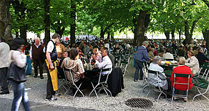 The Müllner Bräustübl is Austria's biggest beer garden. Heaven on earth.